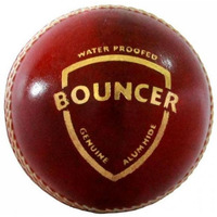 Sg Bouncer Leather Cricket Ball