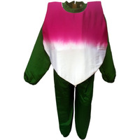 KFD Turnip fancy dress for kids,Vegetables Costume for School Annual function/Theme Party/Competition/Stage Shows Dress