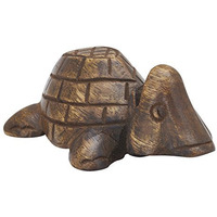 Wooden Turtle Eyegla ...