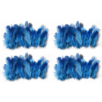 Natural Feathers Po4 Blue Feathers 40X4