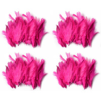 Natural Beautiful Po4 Pink Feathers 40X4