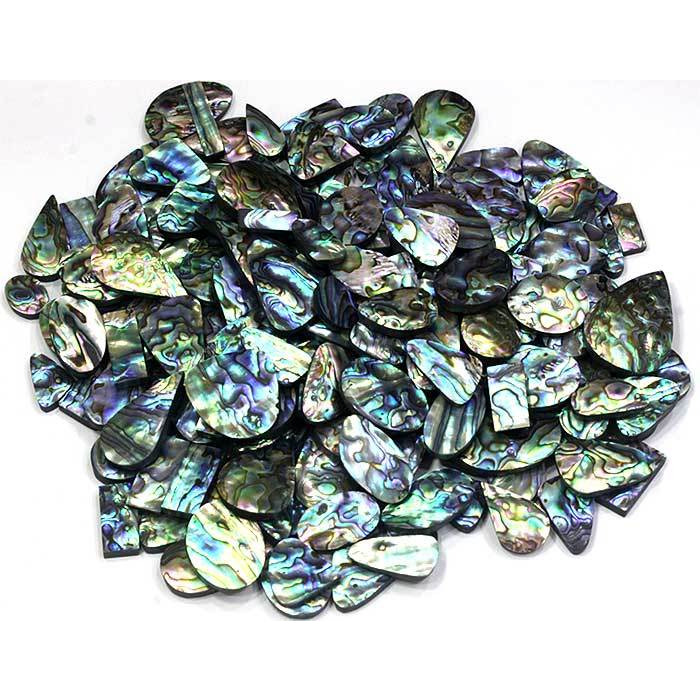 RARE !! 500Cts NATURAL ABALONE SHELL MIX CABOCHON LOOSE GEMSTONE (Weight:1000CTS.)