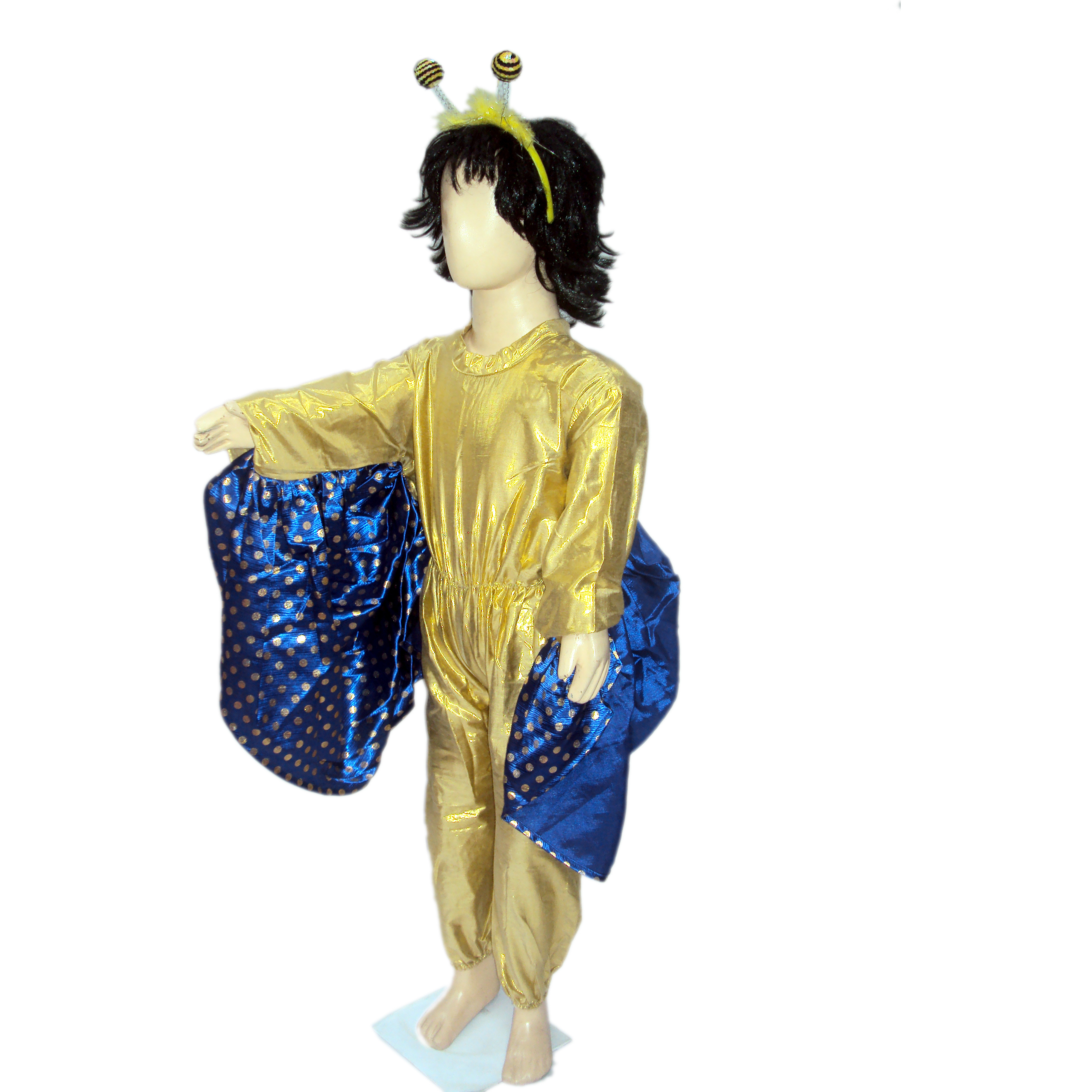 KFD Butterfly Boy fancy dress for kids,Insect Costume for School Annual Function/Theme Party/Competition/Stage Shows Dress